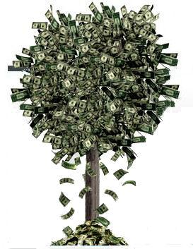 bring-the-fresh-money-tree