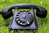 garden-phone-266113